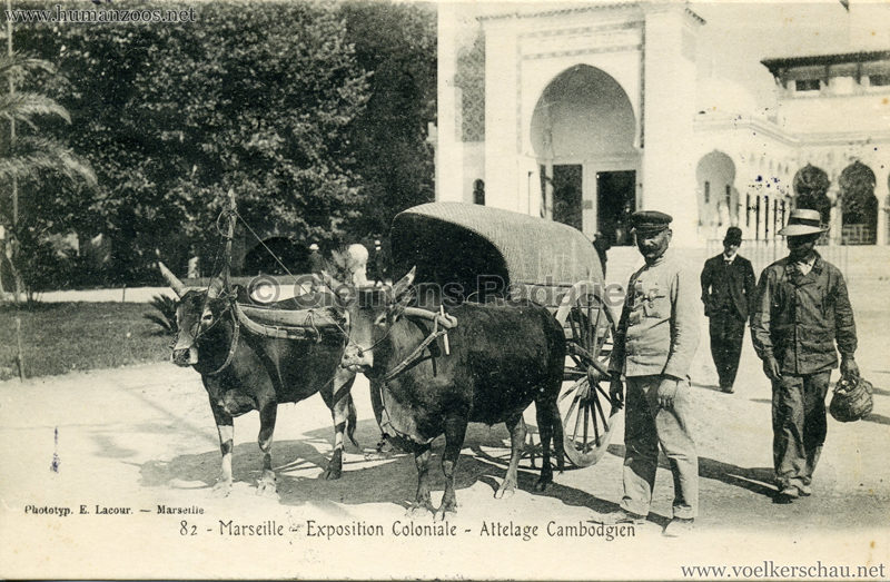 1906-exposition-coloniale-marseille-82-attelage-cambodgien