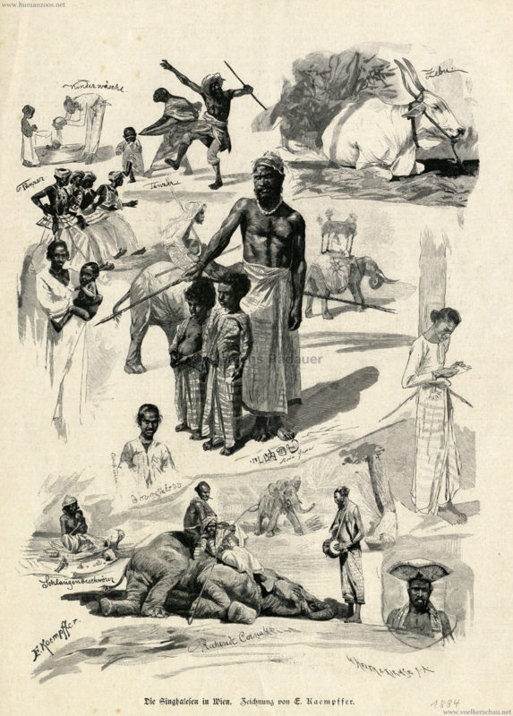 1884 Deutsche Illustrirte Zeitung 1 Jahrgang No 1 - Die Singhalesen in Wien