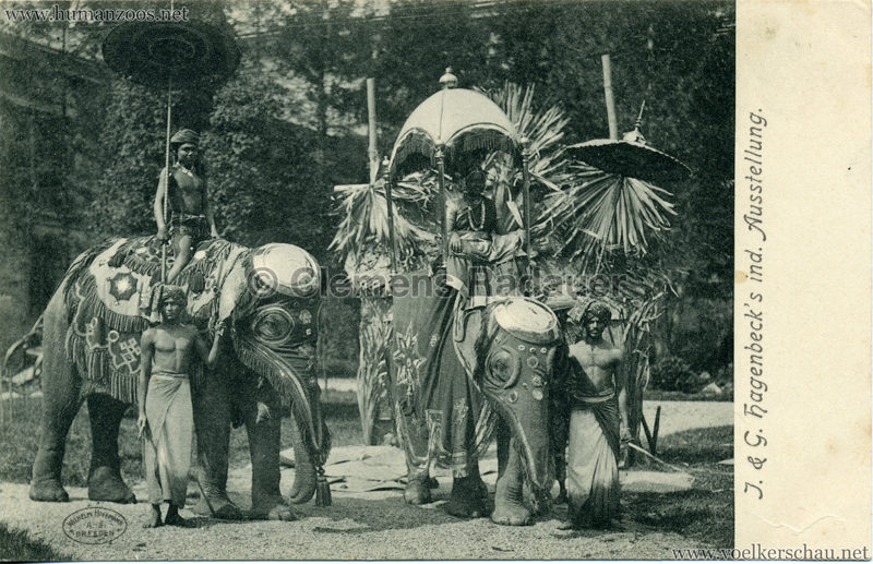 1904 J. & G. Hagenbeck's ind. Ausstellung 1