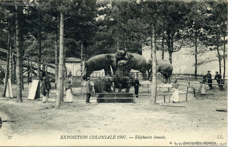 1907 Exposition Coloniale Paris, Bois de Vincennes  Human  ~ Bois De Vincennes Paris