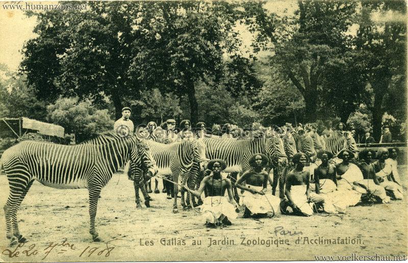 1908 Les Gallas - Jardin d'Acclimatation - 13