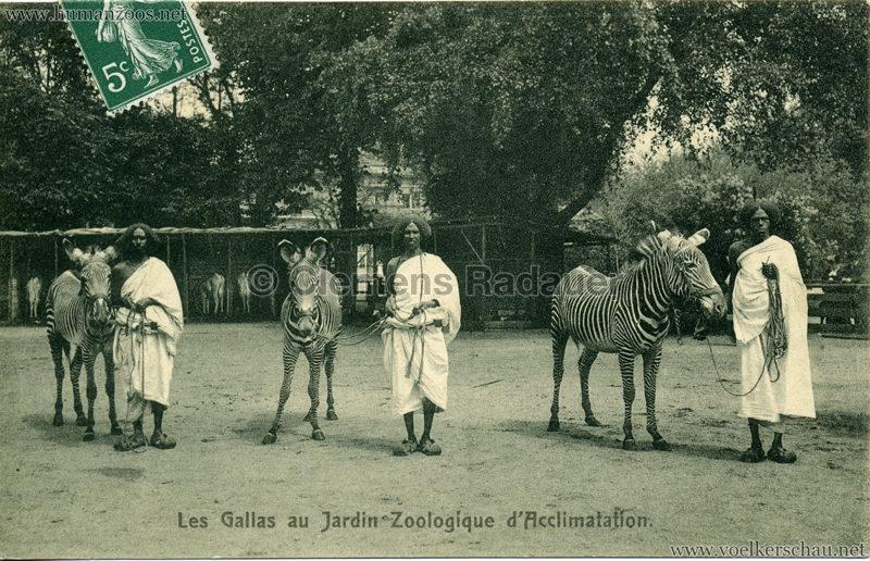 1908 Les Gallas - Jardin d'Acclimatation - 6