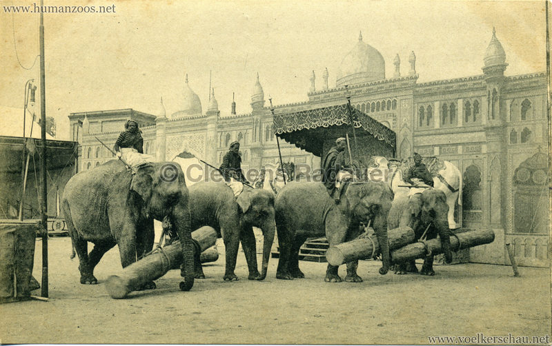 1911:1912 Gustav Hagenbeck's grösste indische Völkerschau der Welt - Elefanten VS
