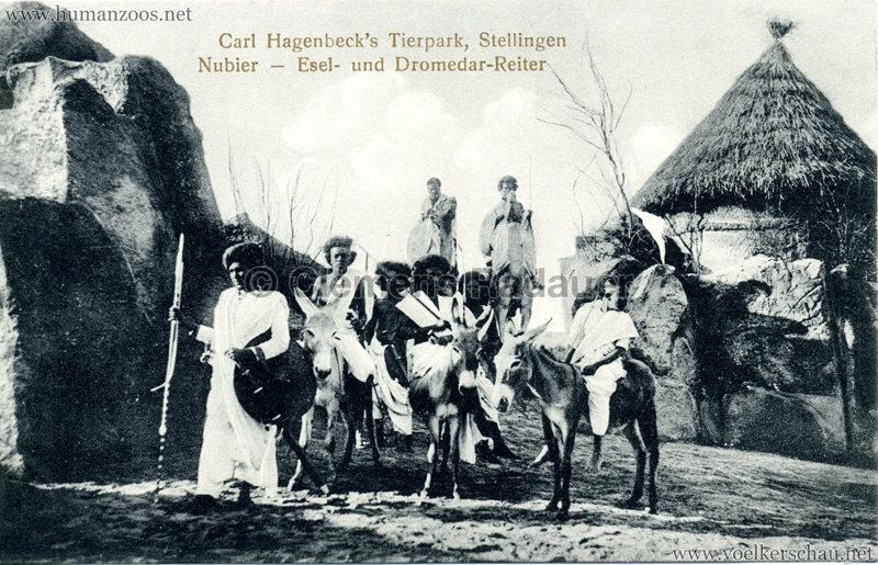 1913/1914 Völkerschau Nubien - 5. Esel- und Dromedar-Reiter
