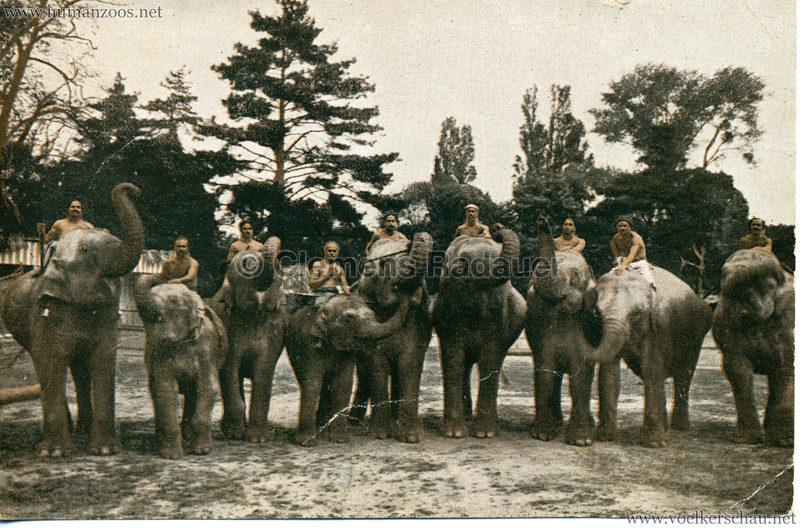 1926 John Hagenbeck's Indienschau 3