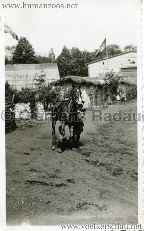 1932 Djigit Kuban Kosaken bei Hagenbeck - Foto 10