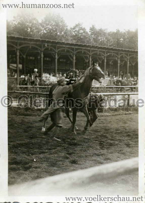 1932 Djigit Kuban Kosaken bei Hagenbeck - Foto 14