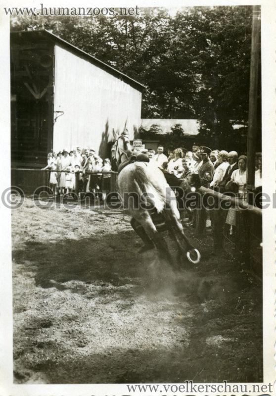 1932 Djigit Kuban Kosaken bei Hagenbeck - Foto 4