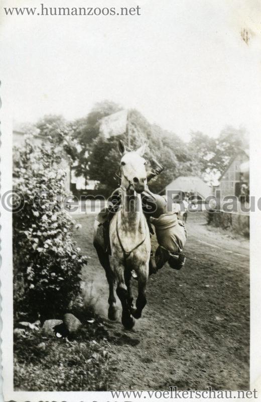 1932 Djigit Kuban Kosaken bei Hagenbeck - Foto 5