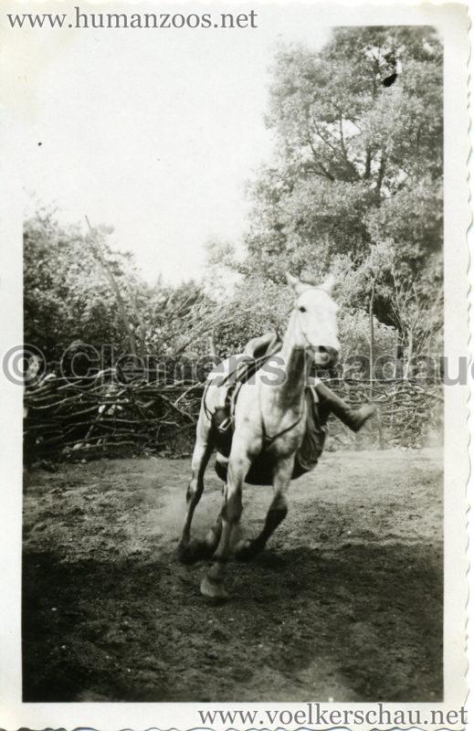 1932 Djigit Kuban Kosaken bei Hagenbeck - Foto 66