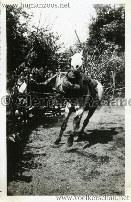 1932 Djigit Kuban Kosaken bei Hagenbeck - Foto 7