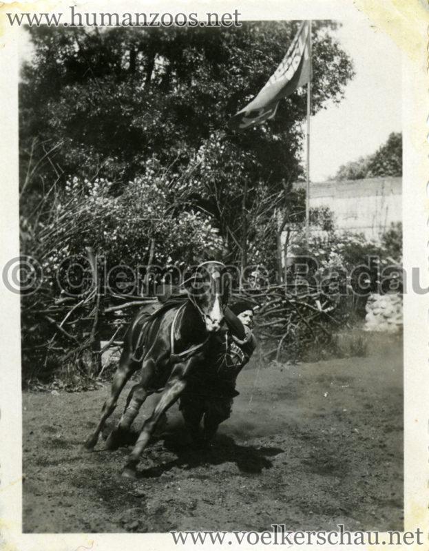 1932 Djigit Kuban Kosaken bei Hagenbeck - Foto 9
