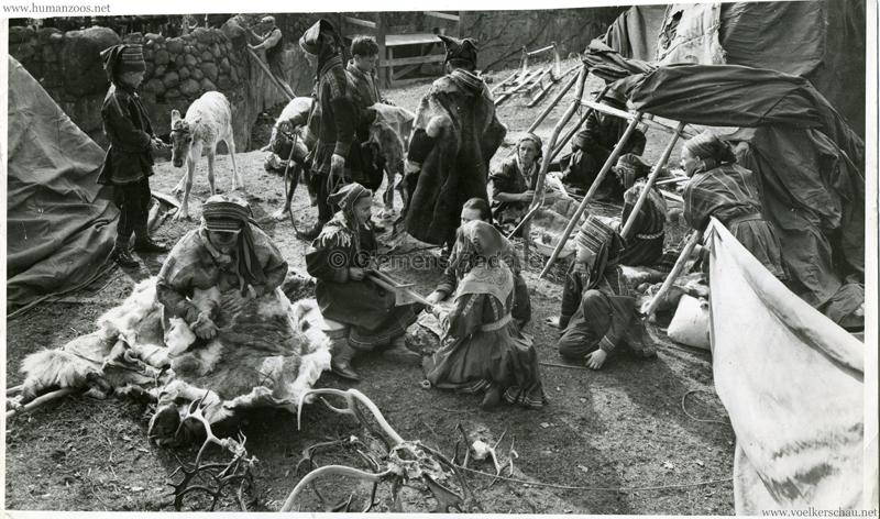 1952 Lappländer im Berliner Zoo Pressefoto VS