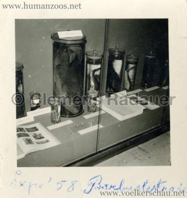 1958-exposition-universelle-bruxelles-fotos-s4-1