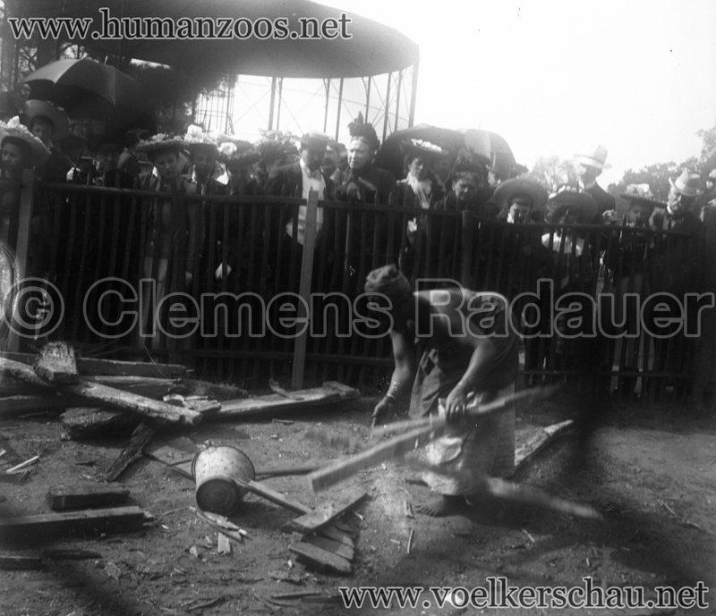 Jardin d'Acclimatation Glassdias 1903 Achantis (?) 2