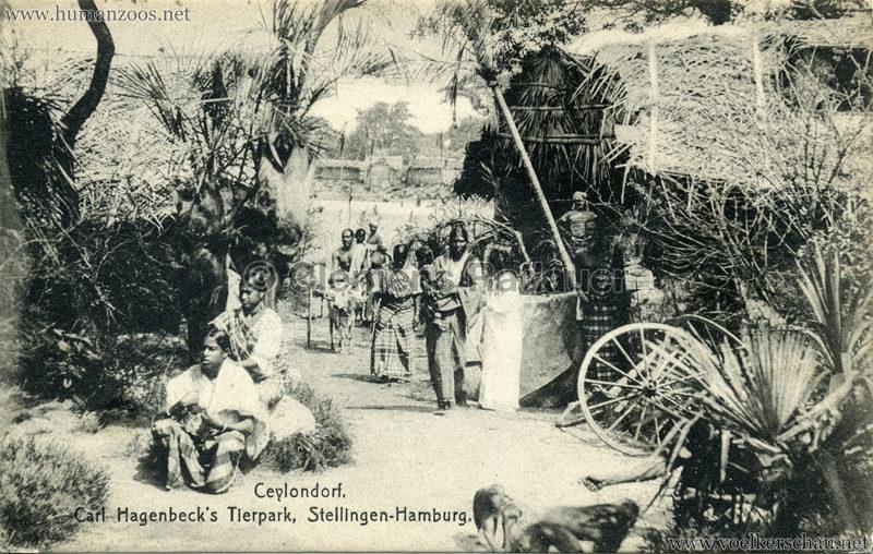 Ceylondorf - 192. RS  29.08.1908 VS