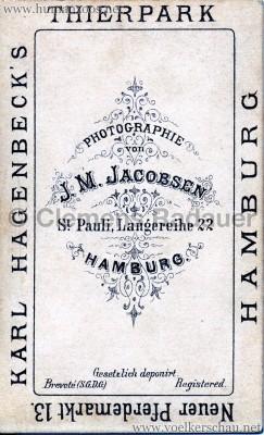 1881 (?) Hagenbeck Eskimo - CDV - Adrian Jacobsen RS