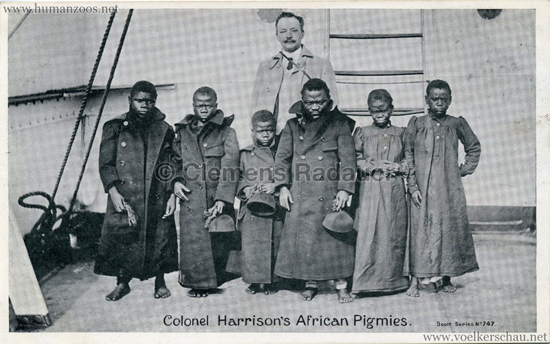 Colonel Harrison's African Pigmies