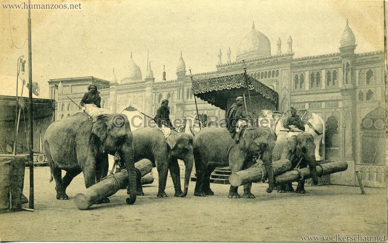 1910:1911:1912 Gustav Hagenbeck's grösste indische Völkerschau der Welt - Elefanten VS