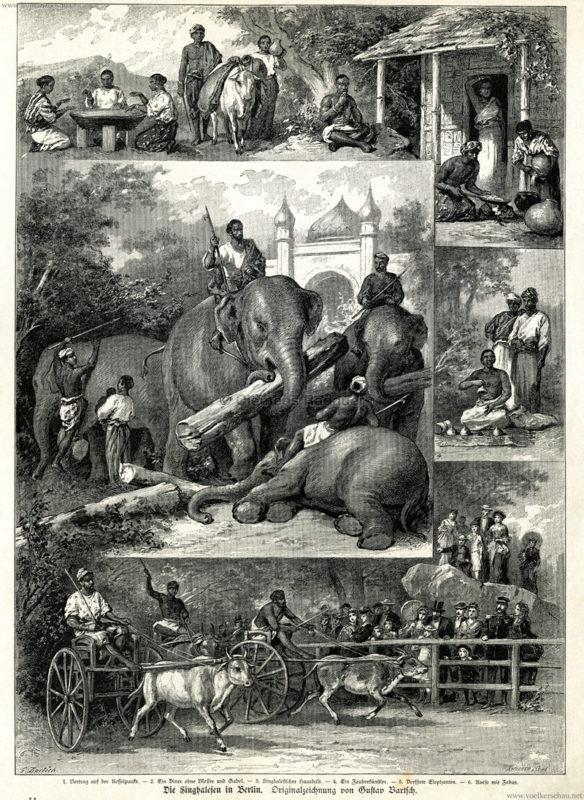 1883-ueber-land-und-meer-no-5-s-89-die-singhalesen-in-berlin
