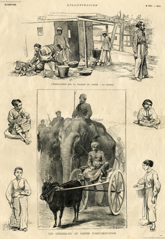 1883-06-23-lillustration-les-cinghalais-au-jardin-dacclimatation-n-2104-401