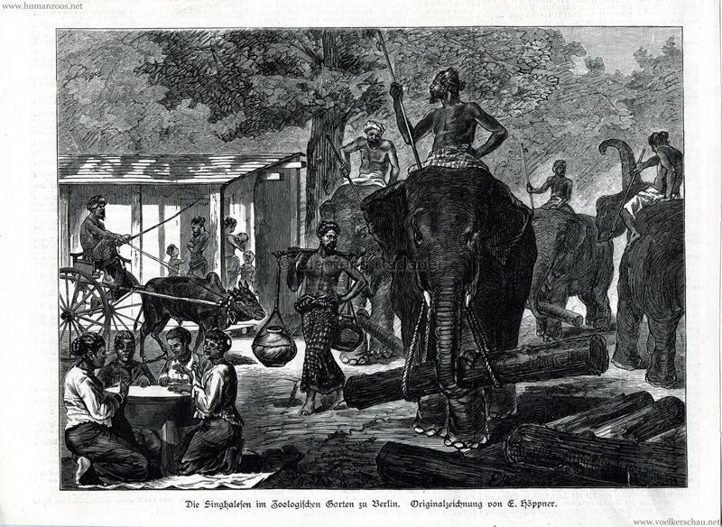 1883.09.15 Illustrierte Zeitung Nr. 2098 - Singhalesen im Zoo Berlin 1