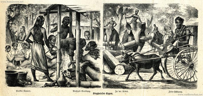 1883.10.22 Der Bazar - Nr. 40 - Die Singhalesen im Zoologischen Garten in Berlin 2