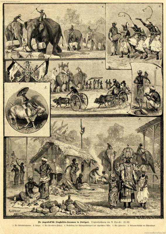 1886-das-buch-fu%cc%88r-alle-heft-3-die-hagenbecksche-singhalesen-karawane-in-stuttgart