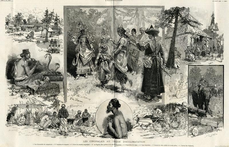 1886 cinghalais au jardin d acclimatation l illustration for Au jardin d acclimatation