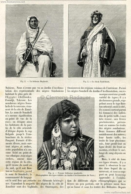 1891.08.29 La Nature - La Caravane Égyptienne au Jardin d'Acclimatation de Paris 3