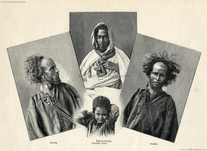 1895 Über Land und Meer N. 47 S. 877 - Tunis in Berlin 1