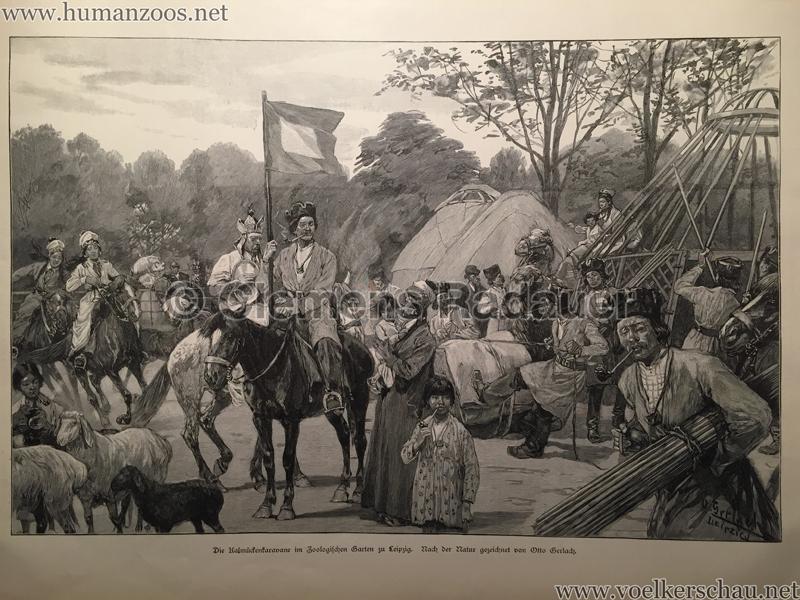 1897.07.08 Illustrirte Zeitung Nr. 2819 - Kalmücken im Zoo Leipzig