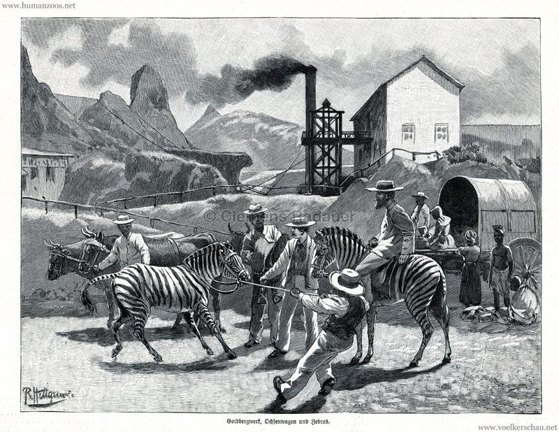 1897.07.22 Illustrirte Zeitung No 2821 - Aus der Transvaal-Ausstellung in Berlin 1