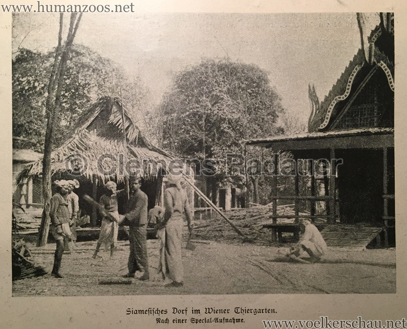 1899 Österreichische Illustrierte Zeitung Nr 22 - Siamesisches Dorf im WIener Thiergarten 5