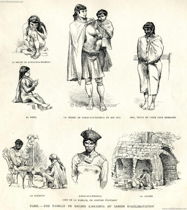 1882-08-12-lillustration-une-famille-de-galibis-caraibes-au-jardin-dacclimatation