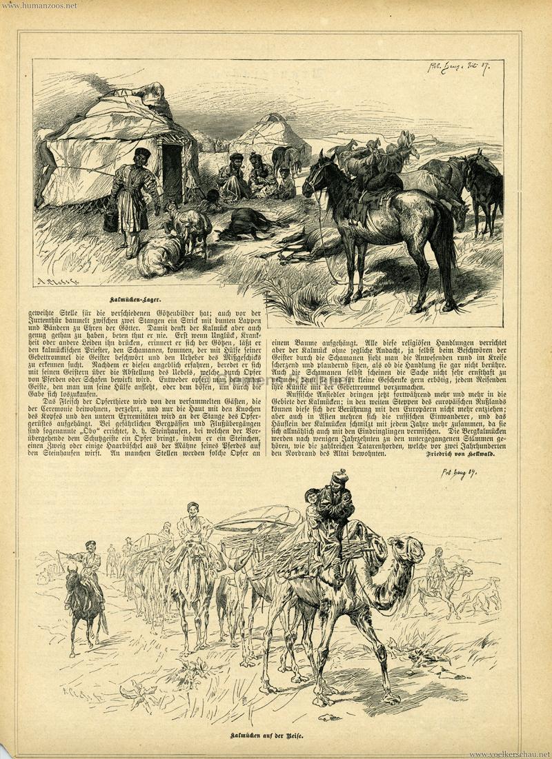 1884 Gartenlaube S. 645