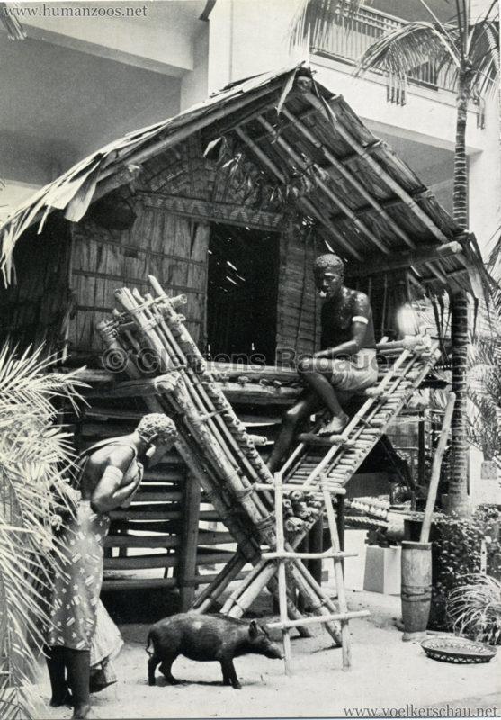 Übersee-Museum Bremen, Pfahlhaus von der Insel Bougainville (Salomonen, Südsee) 2