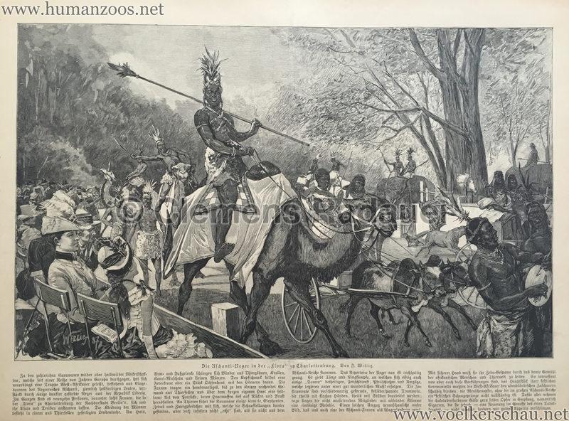 1887.09.04 S. 392 Die illustrirte Zeit - Die Aschanti-Neger in der