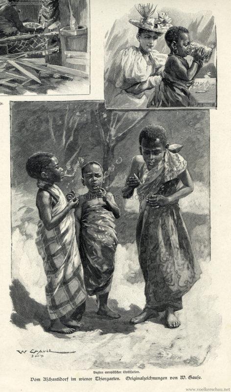 1897.09.05 Illustrirte Zeitung No. 2823 S. 189 - Die Aschanti im wiener Thiergarten - Beginn europäischer Civilisation