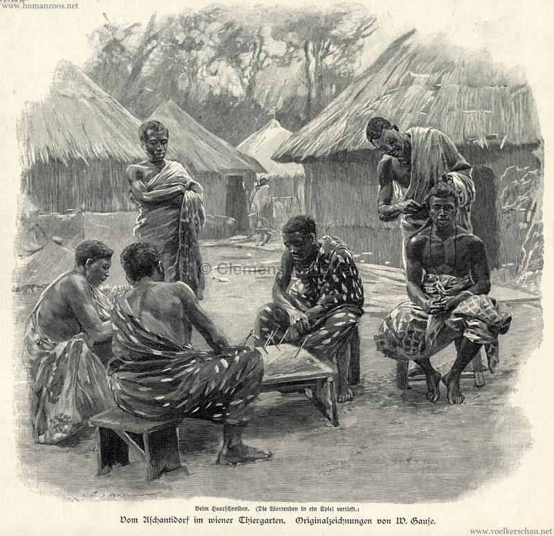 1897.09.05 Illustrirte Zeitung No. 2823 S. 189 - Die Aschanti im wiener Thiergarten - Beim Haarschneiden
