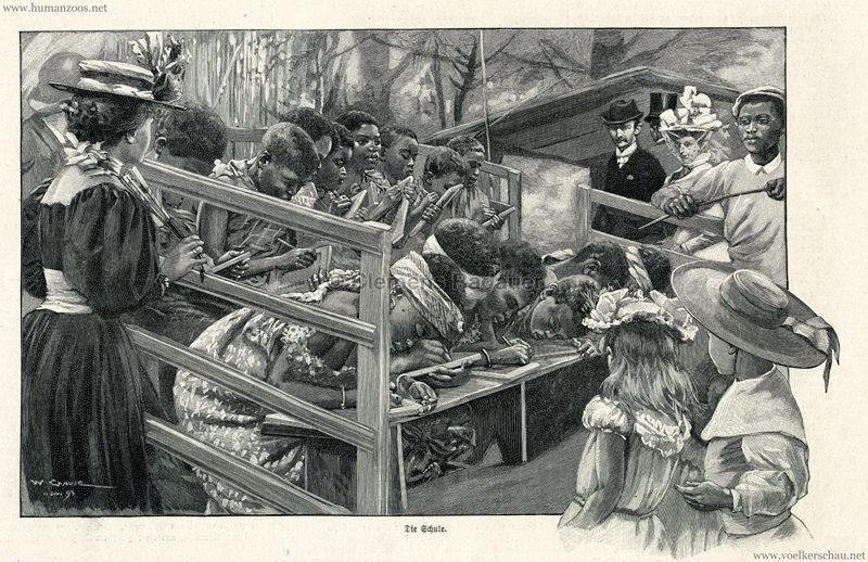 1897.09.05 Illustrirte Zeitung No. 2823 S. 189 - Die Aschanti im wiener Thiergarten - Die Schule