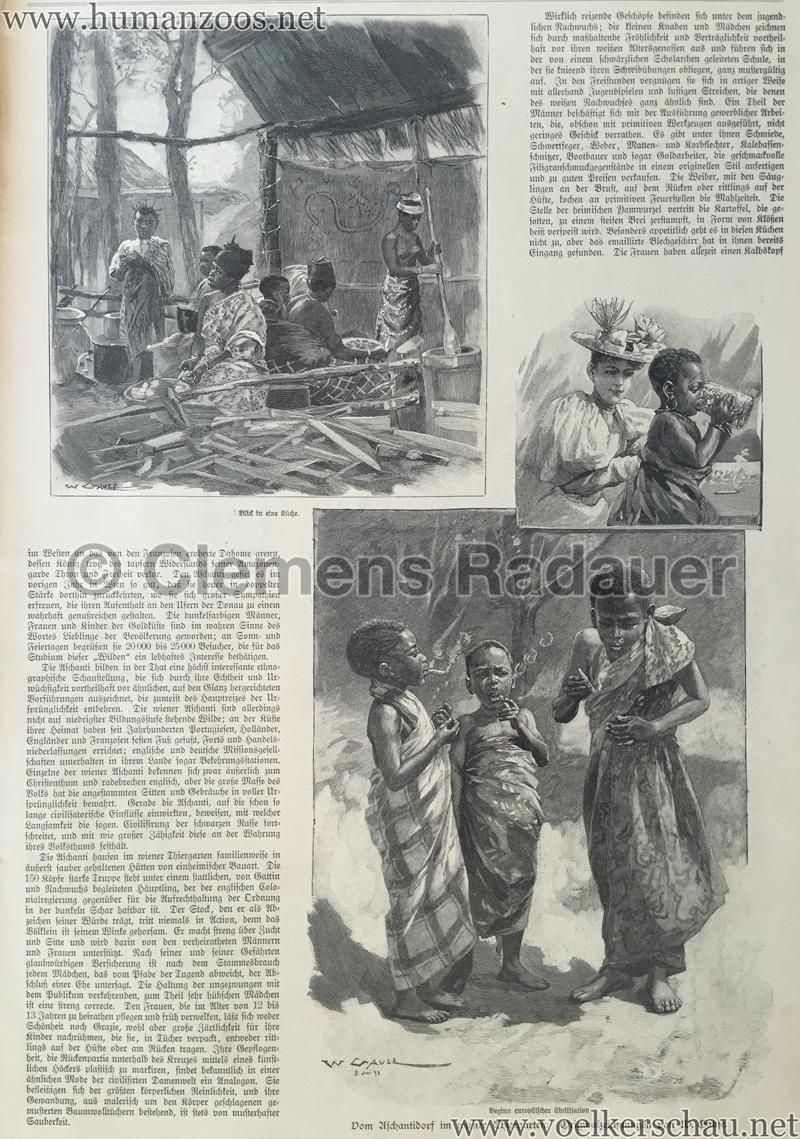 1897.09.05 Illustrirte Zeitung No. 2823 S. 189 - Die Aschanti im wiener Thiergarten S. 191