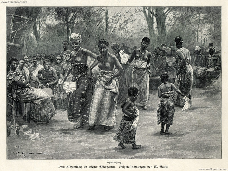 1897.09.05 Illustrirte Zeitung No. 2823 S. 189 - Die Aschanti im wiener Thiergarten - Taschentuchtanz