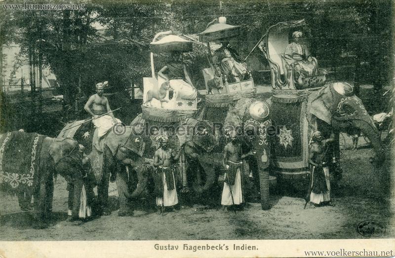 1905/1906 Gustav Hagenbecks Indien - 3 Elephanten VS