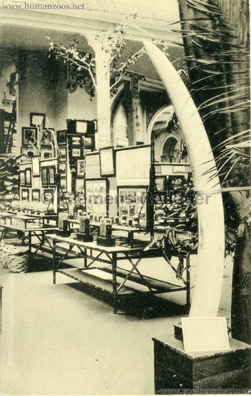 1913 Exposition de Gand - Congo belge. Propagande agricole coloniale 3