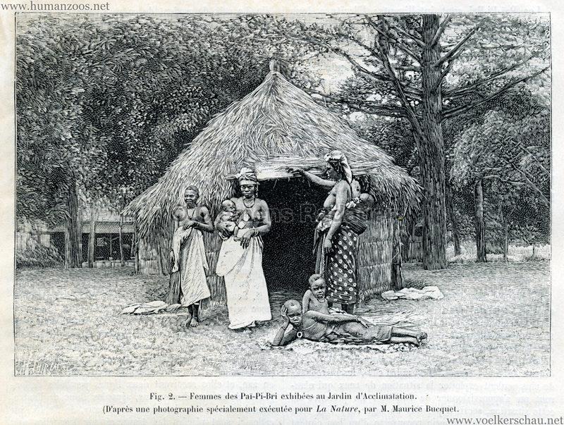 1893.09.19 La Nature No 1055 - Les Pai-Pi-Bri du Jardin d'Acclimatation Illustration 2