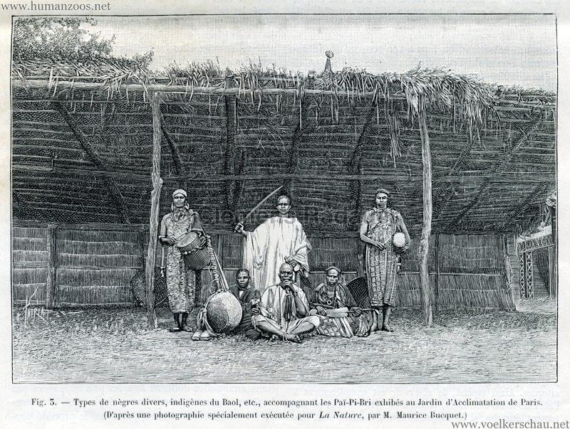 1893.09.19 La Nature No 1055 - Les Pai-Pi-Bri du Jardin d'Acclimatation Illustration 3