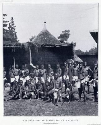 1893 les pai pi bri au jardin d acclimatation figaro for Au jardin d acclimatation