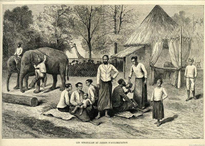 1883.07.01 La Famille No 195 - Types de Singhalais (Jardin d'acclimatation) S. 408-409