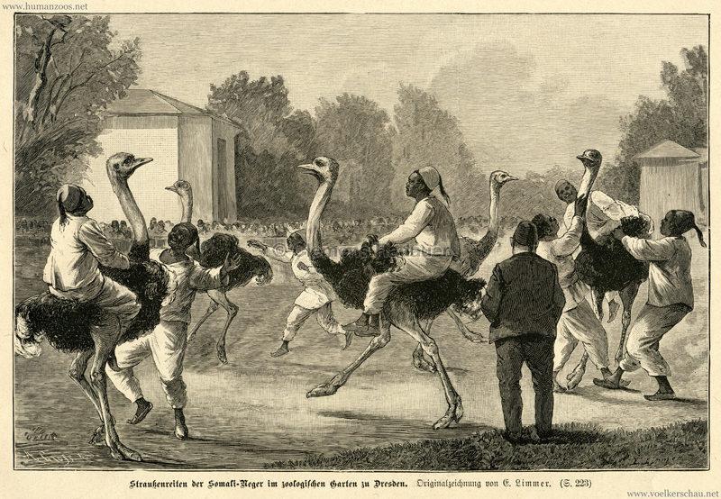 1886. Das Buch für Alle - Heft 10 - Straußenreiten der Somali-Neger im zoologischen Garten zu Dresden